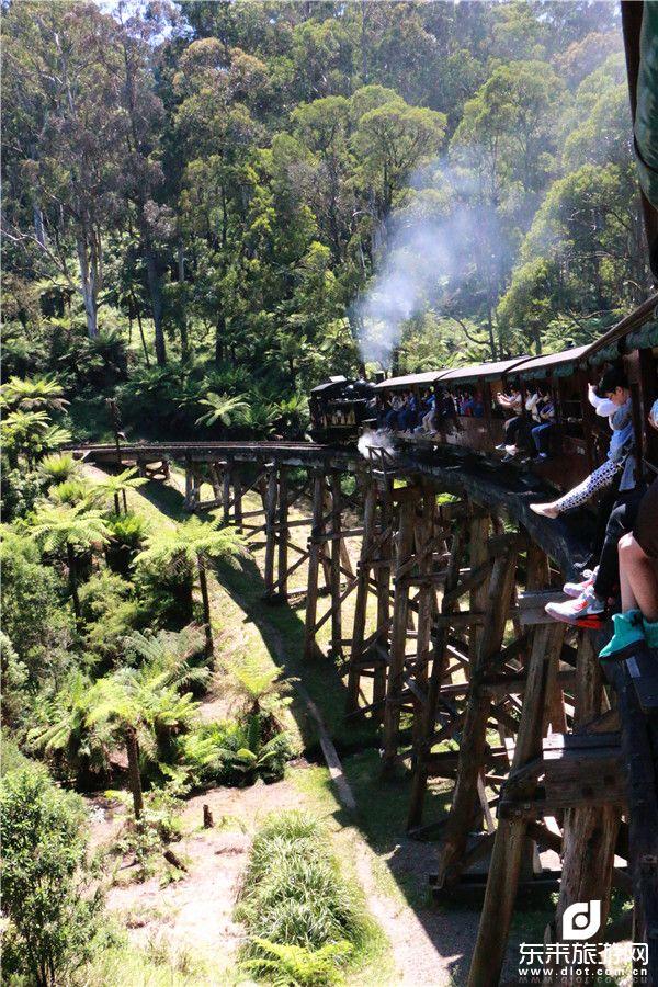 丹尼农国家森林公园蒸汽小火车
